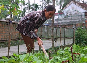 Người hưởng lương hưu thấp nhất Việt Nam là 350.000 đồng