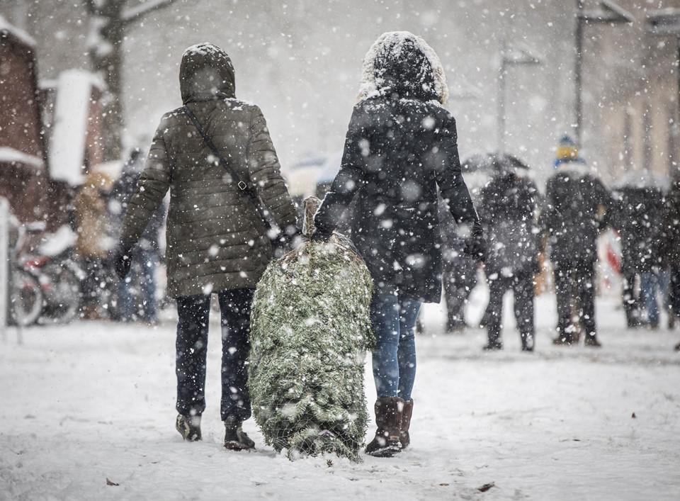 Bão tuyết càn quét châu Âu, giao thông hỗn loạn như chiến sự