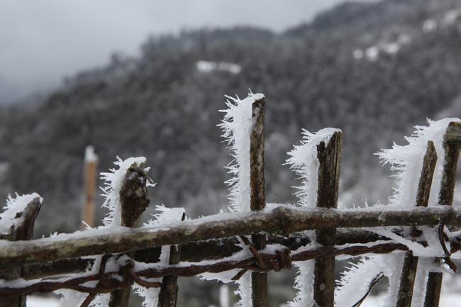 Đây là lý do khẳng định mùa đông năm nay sẽ khắc nghiệt hơn