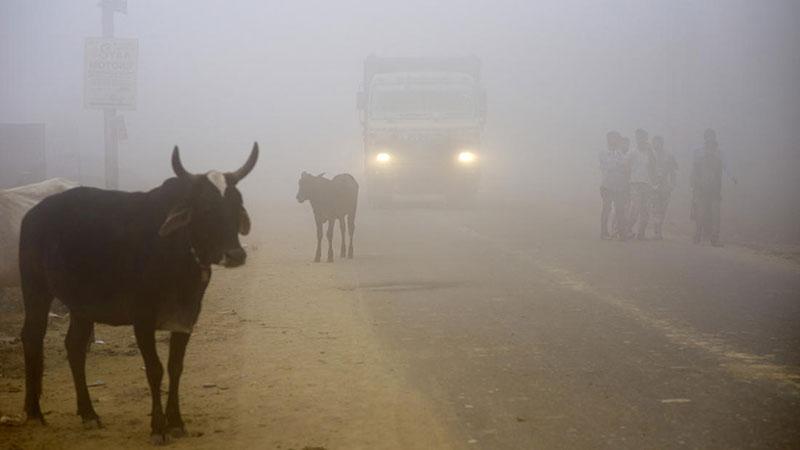 Cuộc sống của 20 triệu người ở thủ đô ô nhiễm nhất thế giới