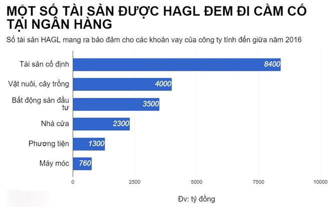 Ai đang là chủ nợ lớn nhất của Hoàng Anh Gia Lai?