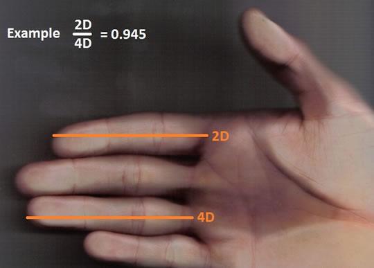 Khoa học chứng minh: Đàn ông tốt với phụ nữ hay không có thể tiết lộ qua đặc điểm trên bàn tay