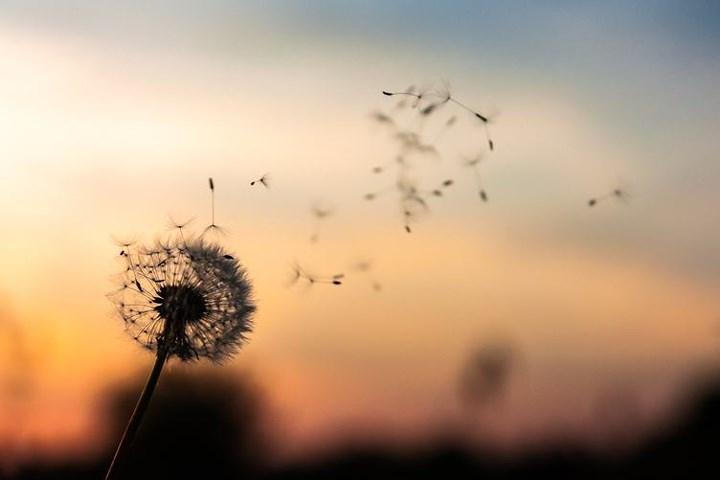 10 bài học quý giá bạn nhận được sau khi tình yêu tan vỡ