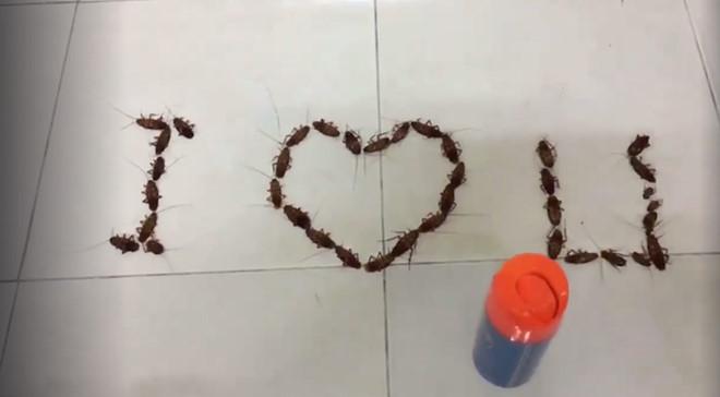 Valentine nhìn lại những màn tỏ tình gây chú ý trong giới trẻ Việt