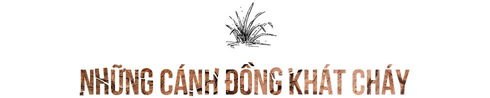 Ninh Thuận khát cháy đầu mùa khô