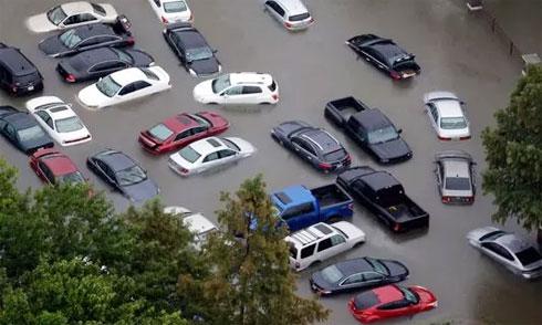 Ôtô ngập nước vì bão lũ tại Mỹ được bán ra nước ngoài