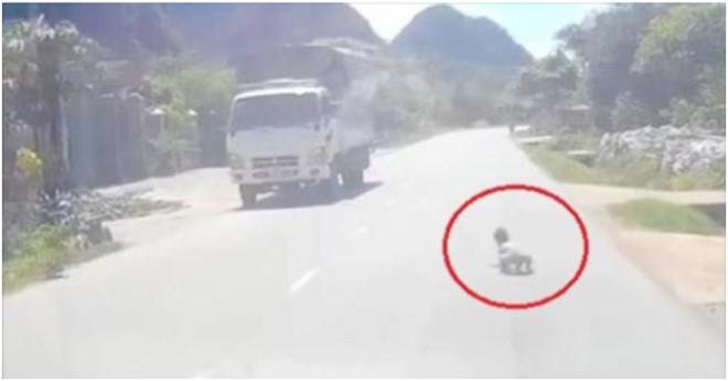 Tài xế phanh gấp khi phát hiện cháu bé bò lổm ngổm trên quốc lộ