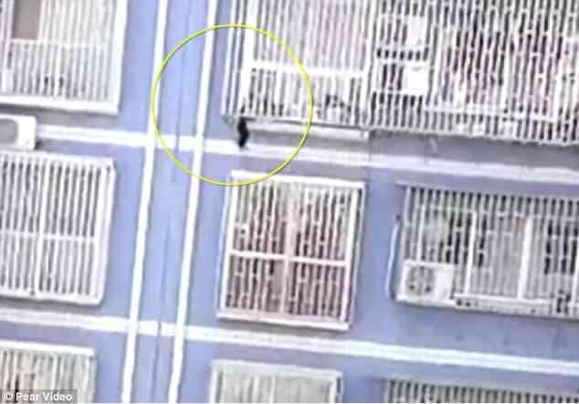 Lại xuất hiện thêm 1 Spider-Man tay không leo 5 tầng nhà để cứu em bé treo lơ lửng tại Trung Quốc