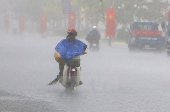 Siêu áo mưa cho sếp giá 1 triệu đồng/bộ là áo mưa gì?