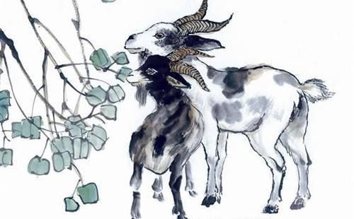 4 con giáp bị xui xẻo đeo bám, tiểu nhân liên tục quấy phá trong cuối năm 2018