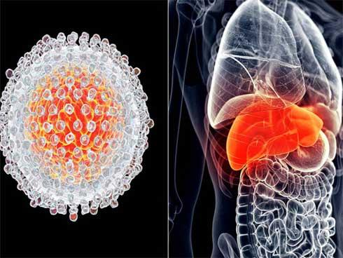Bệnh ung thư gan thường phát triển trong âm thầm, ít người để ý khi cơ thể gửi đến những dấu hiệu cảnh báo. 7 dấu hiệu sau đây rất quan trọng, bạn nên ghi nhớ để khám kịp thời.