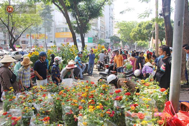 Đại hạ giá vẫn không hết, tiểu thương Sài Gòn thẳng tay đập chậu, chặt gốc hoa chứ quyết không để người dân 'hôi hoa' trưa 30 Tết - 15