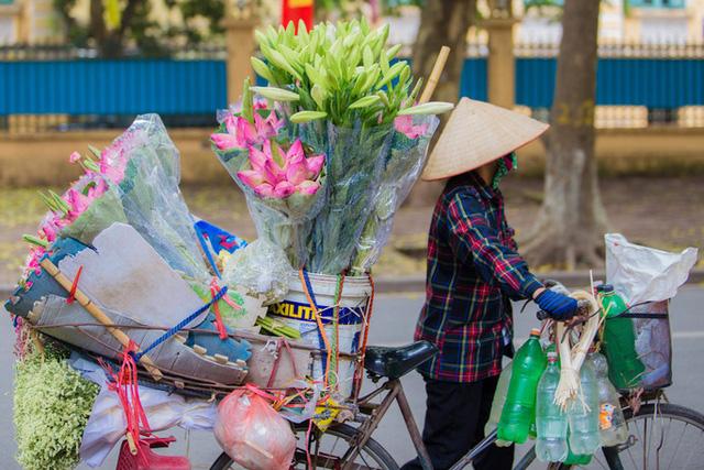 Hoa sen đầu mùa rục rịch lên phố - 2