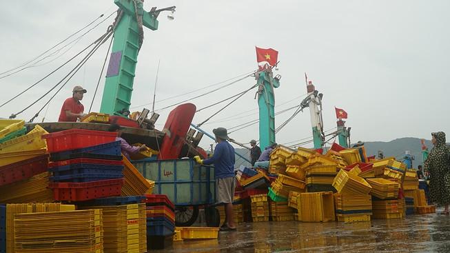 Bình Định: 1 tàu cá bị chìm trên đường tránh bão, 12 thuyền viên mất tích