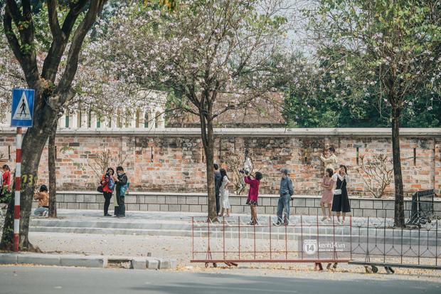 Hà Nội đẹp mê mẩn trong sắc tím hoa ban rợp trời, dân tình rần rần rủ nhau về con đường nổi tiếng chụp ảnh - 6