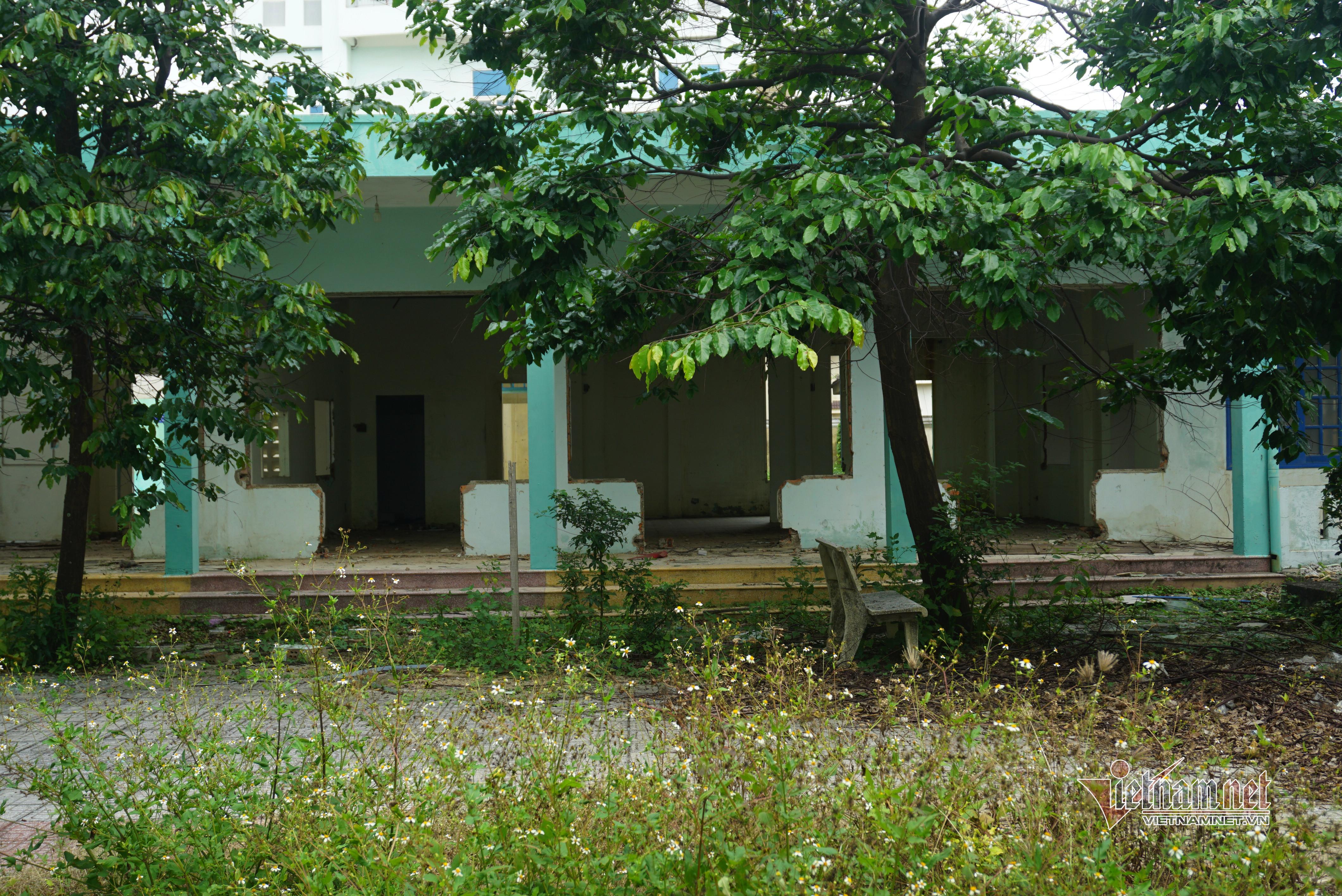 Video ảnh: Giữa khu đất vàng Đà Nẵng bệnh viện bỏ hoang, thành nơi phóng uế, vẽ bậy - 6