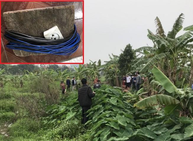 Bẫy chuột bằng điện làm chết người, chủ ruộng bị khởi tố