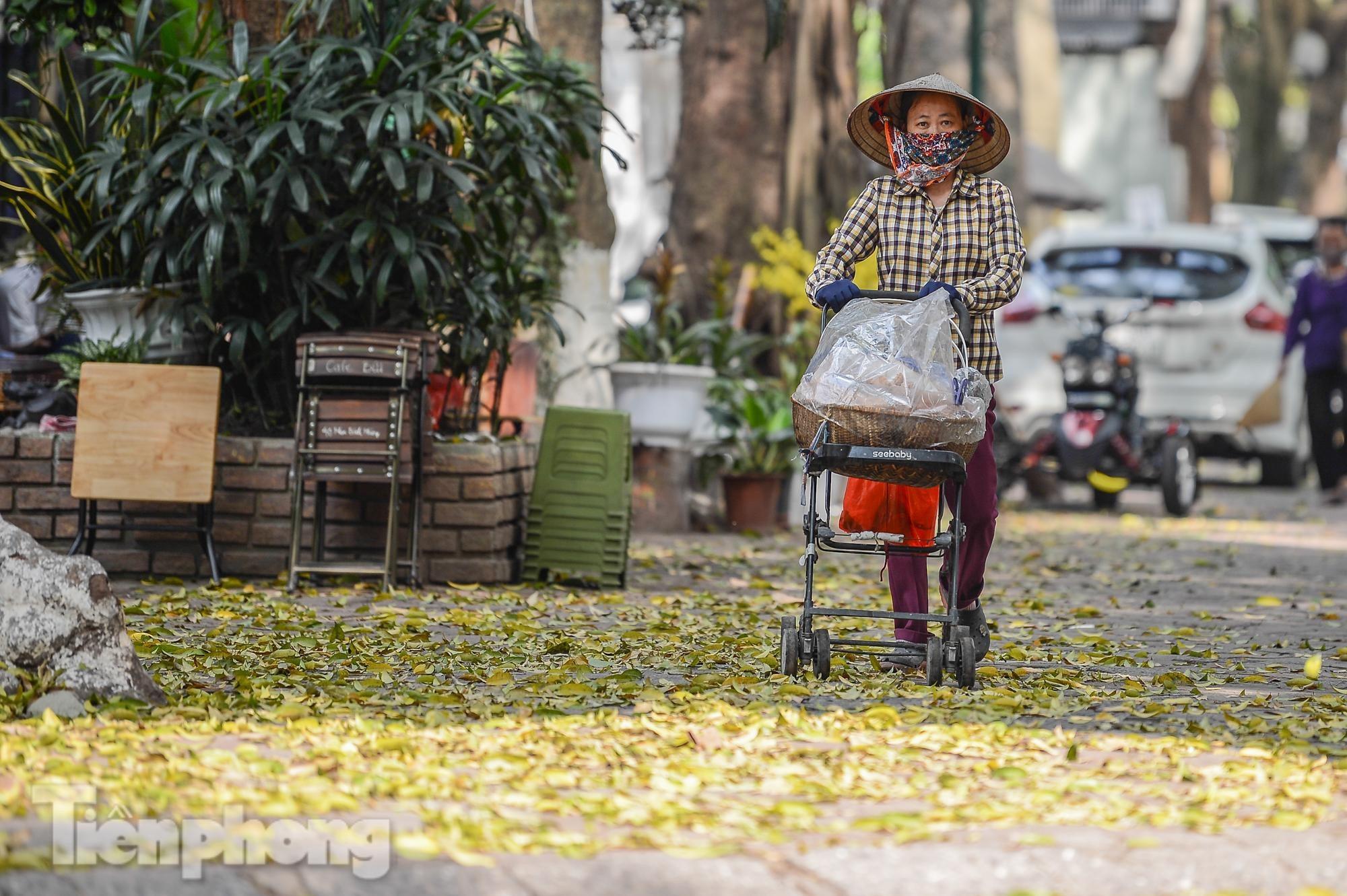 Người dân Thủ đô mê mẩn mùa lá sấu rụng - 13