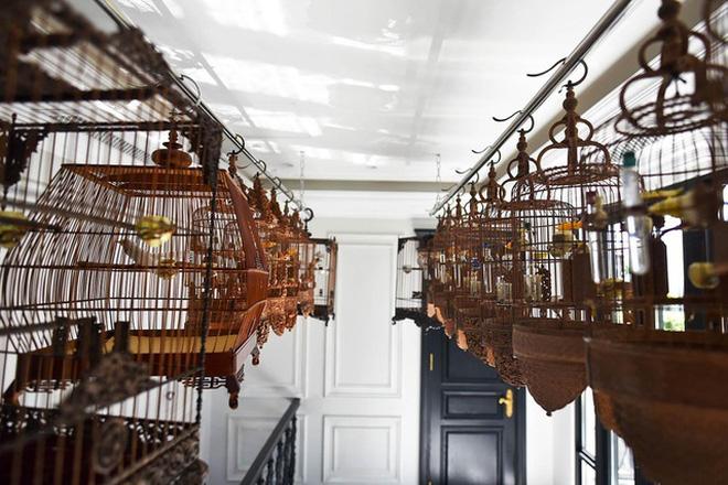 Biệt thự phố cổ Hà Nội của đại gia thời trang Chương Tailor: Xây bể cá Koi 5 tỷ ở ban công, dành nguyên tầng điều hòa nuôi chim đột biến - 6