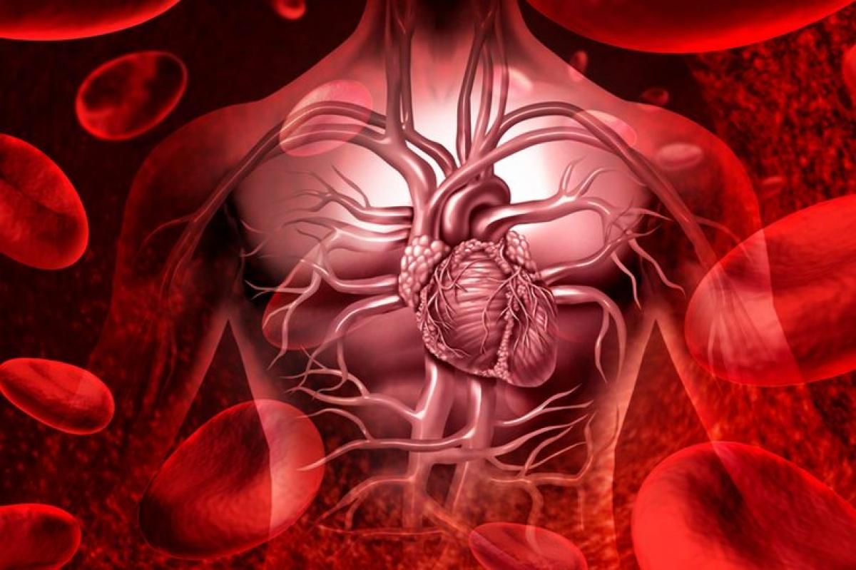 8 lý do bạn nên biết nhóm máu của mình - 1