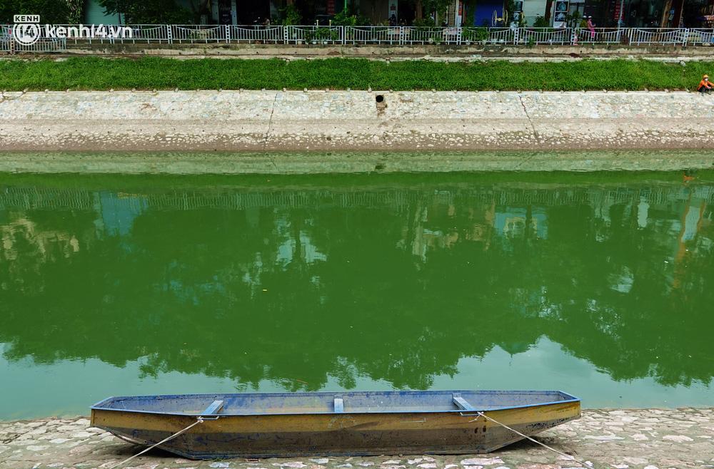 Hà Nội: Sông Tô Lịch bất ngờ chuyển màu xanh ngắt, người dân mang theo bao bắt hàng trăm cân cá đem về - 2