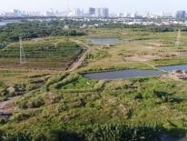Ai sẽ bị xử lý vụ chuyển nhượng hơn 30 ha đất cho Quốc Cường Gia Lai?