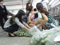 Doanh nghiệp gom hơn 4 tấn chanh ế phát không cho dân