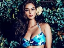 Vẻ đẹp sắc sảo của tân Hoa hậu Hoàn vũ 2015