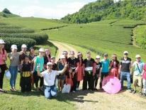 Đến Mộc Châu du lịch sinh thái nông nghiệp