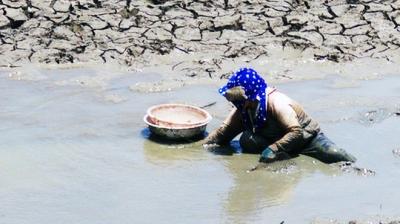 Ninh Thuận khát cháy đầu mùa khô - 18