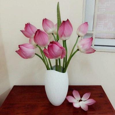Từ giờ đến cuối năm phòng khách chỉ cần bày 5 loại hoa này, tiền vào như nước, muốn ngừng không được