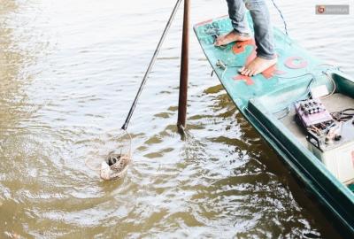 Ảnh: Chi 20 triệu mua cá chép rồi đi thuyền ra giữa sông để phóng sinh, người phụ nữ Sài Gòn vẫn choáng khi thấy gã thanh niên lao theo chích điện để vớt cá - 10